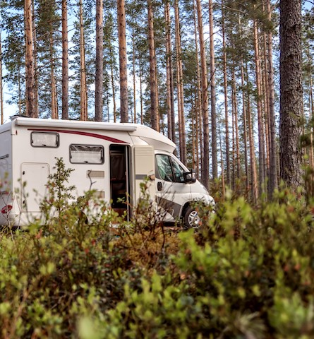 Low-profile motorhome hire